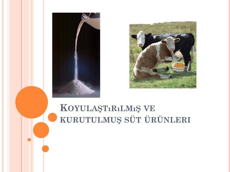 Koyulaştırılmış ve kurutulmuş süt ürünleri