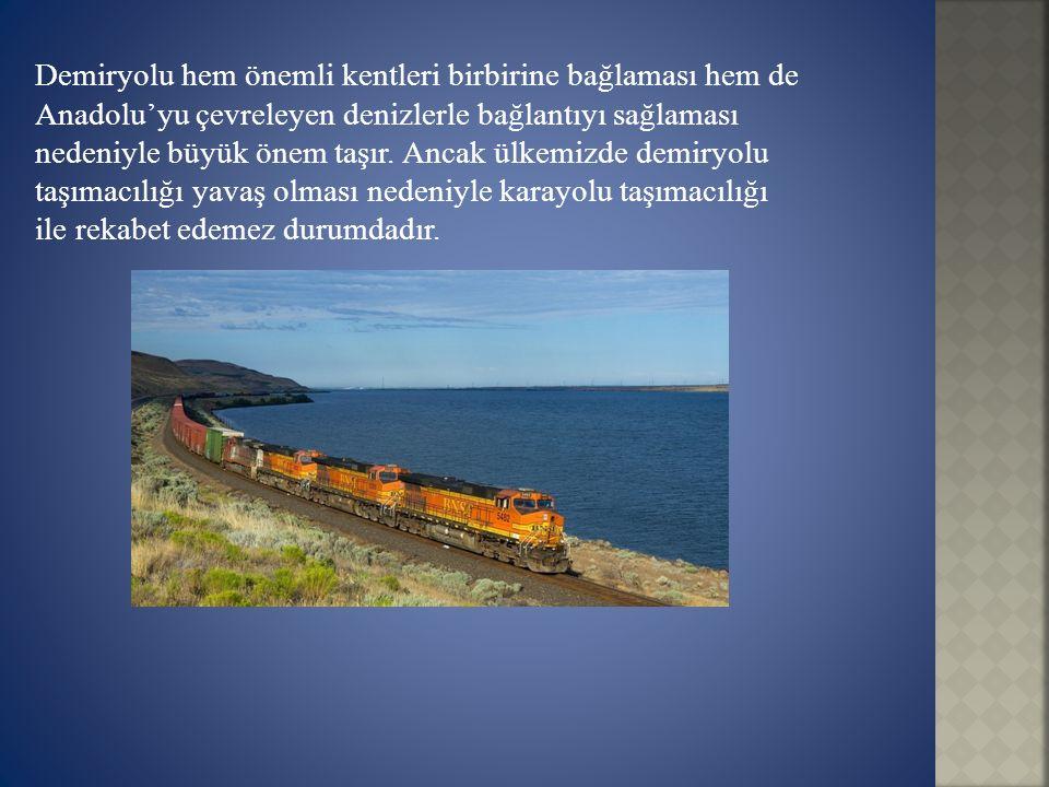 Demiryolu hem önemli kentleri birbirine bağlaması hem de Anadolu'yu çevreleyen denizlerle bağlantıyı sağlaması nedeniyle büyük önem taşır.