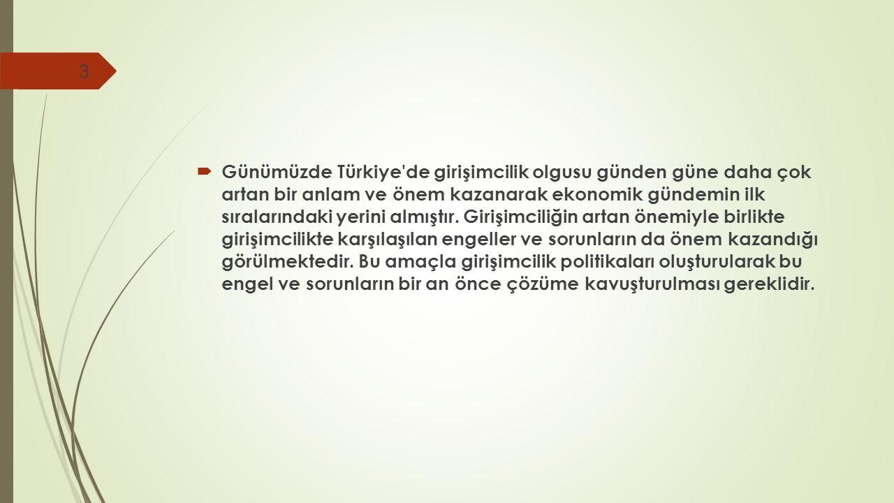 Günümüzde Türkiye de girişimcilik olgusu günden güne daha çok artan bir anlam ve önem kazanarak ekonomik gündemin ilk sıralarındaki yerini almıştır.