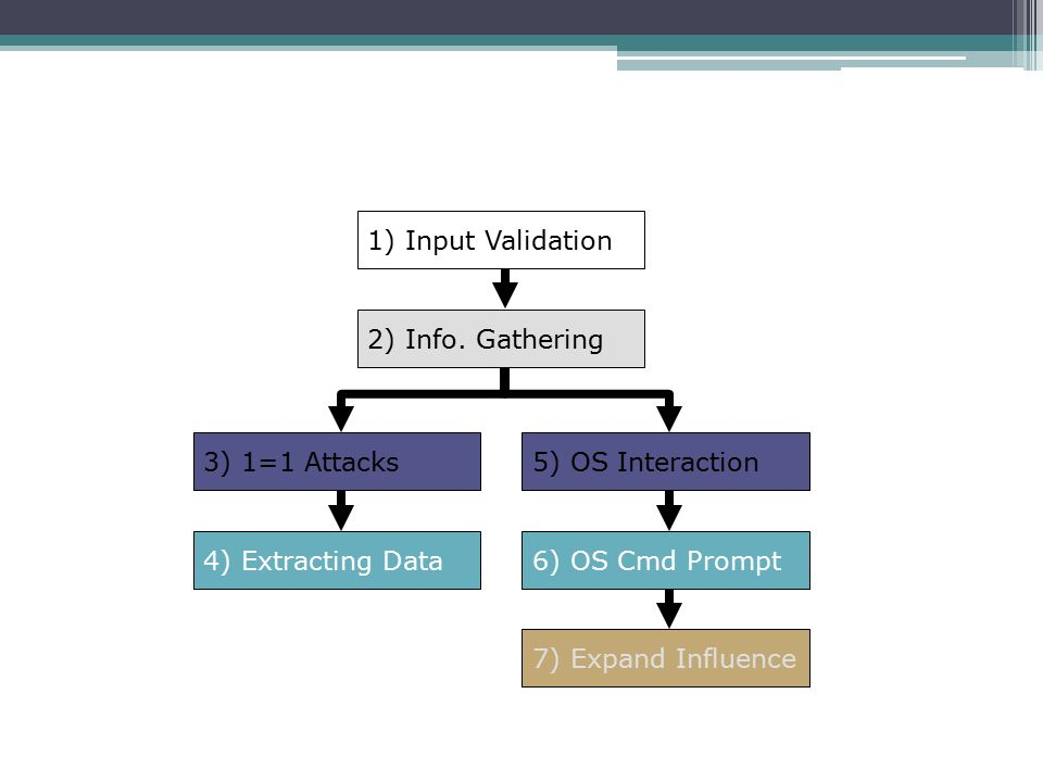 1) Input Validation 2) Info. Gathering. 3) 1=1 Attacks. 5) OS Interaction. 4) Extracting Data. 6) OS Cmd Prompt.