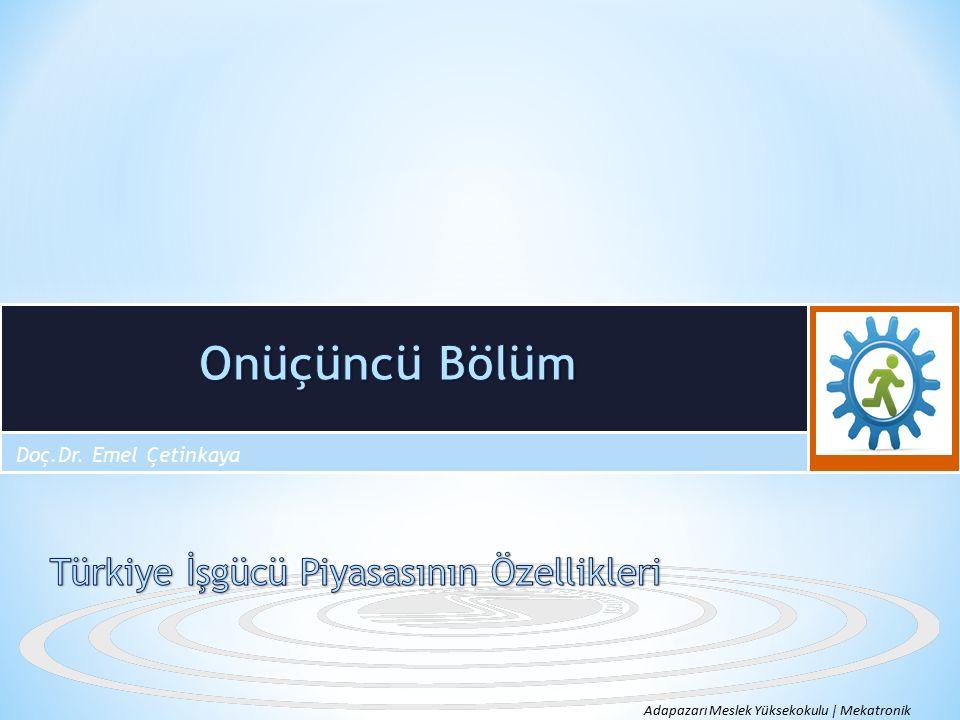 Onüçüncü Bölüm Türkiye İşgücü Piyasasının Özellikleri