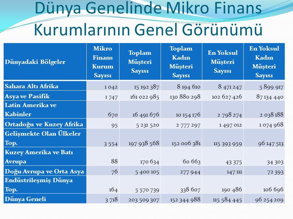 Dünya Genelinde Mikro Finans Kurumlarının Genel Görünümü