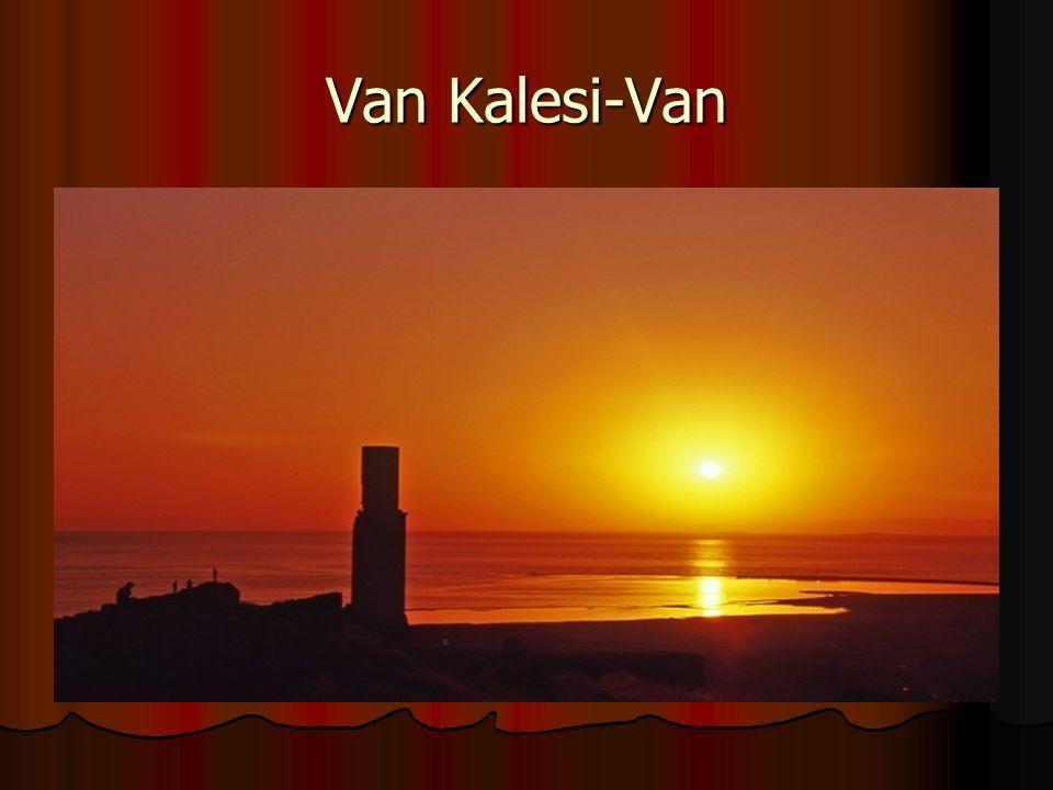 Van Kalesi-Van