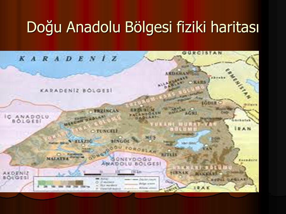 Doğu Anadolu Bölgesi fiziki haritası