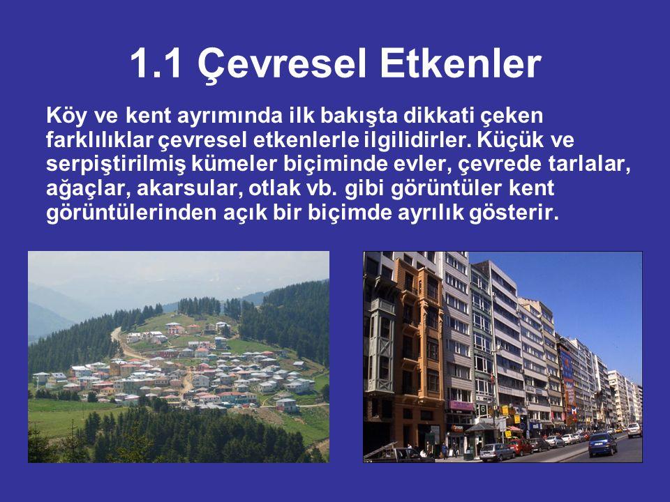 1.1 Çevresel Etkenler