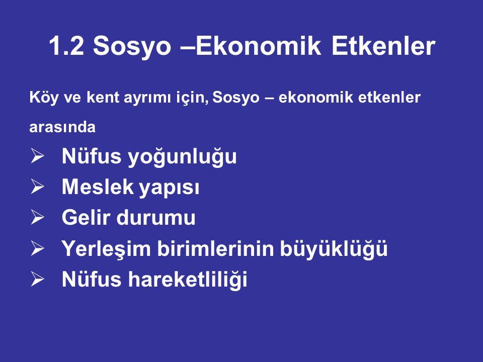 1.2 Sosyo –Ekonomik Etkenler