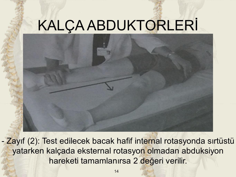 KALÇA ABDUKTORLERİ