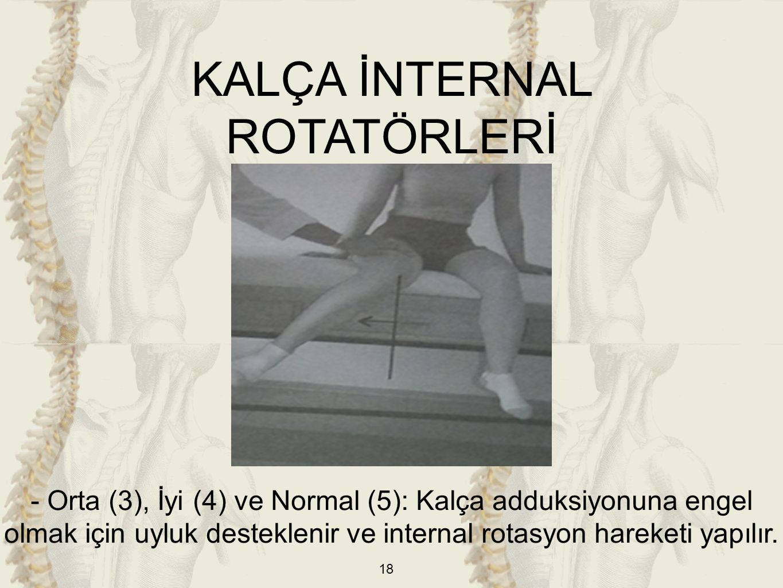 KALÇA İNTERNAL ROTATÖRLERİ