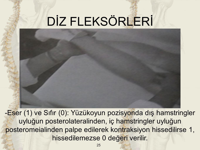 DİZ FLEKSÖRLERİ