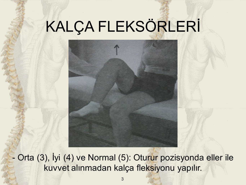 KALÇA FLEKSÖRLERİ - Orta (3), İyi (4) ve Normal (5): Oturur pozisyonda eller ile kuvvet alınmadan kalça fleksiyonu yapılır.