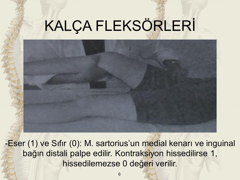 KALÇA FLEKSÖRLERİ