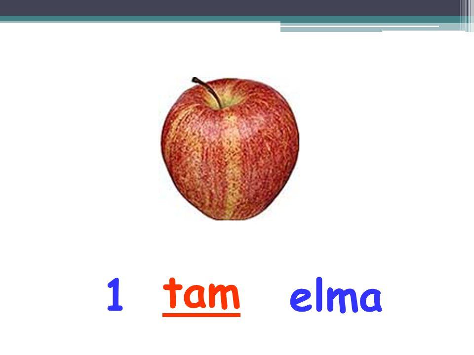 tam 1 elma