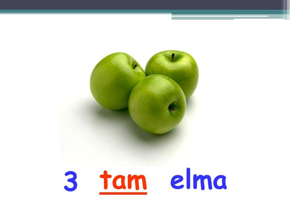 tam elma 3