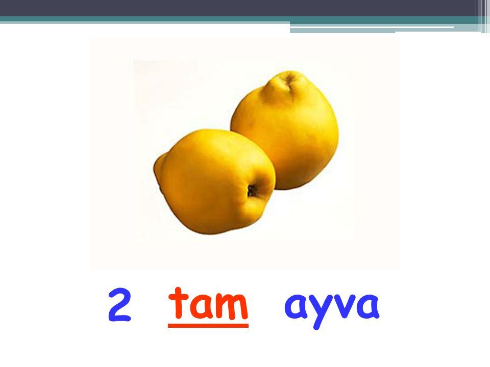 tam ayva 2