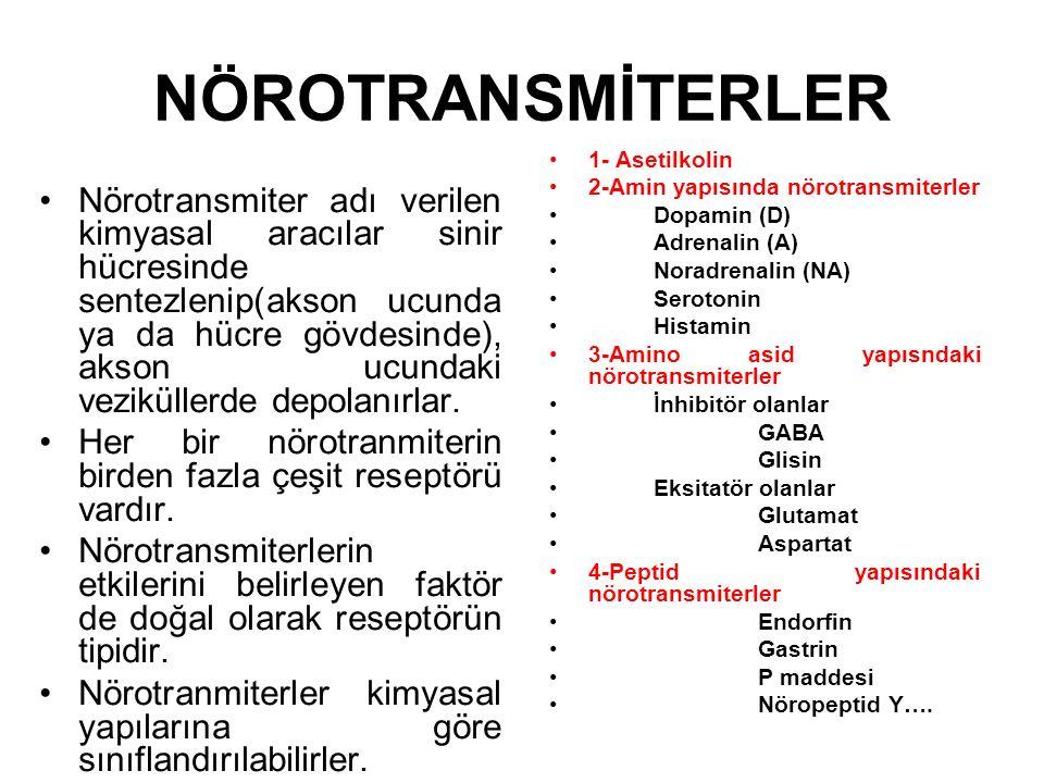 NÖROTRANSMİTERLER