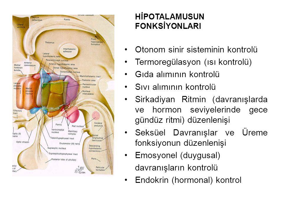 Otonom sinir sisteminin kontrolü Termoregülasyon (ısı kontrolü)