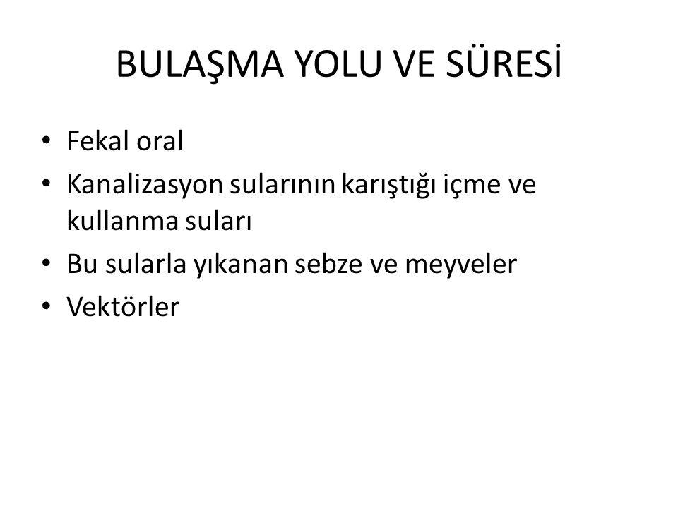 BULAŞMA YOLU VE SÜRESİ Fekal oral