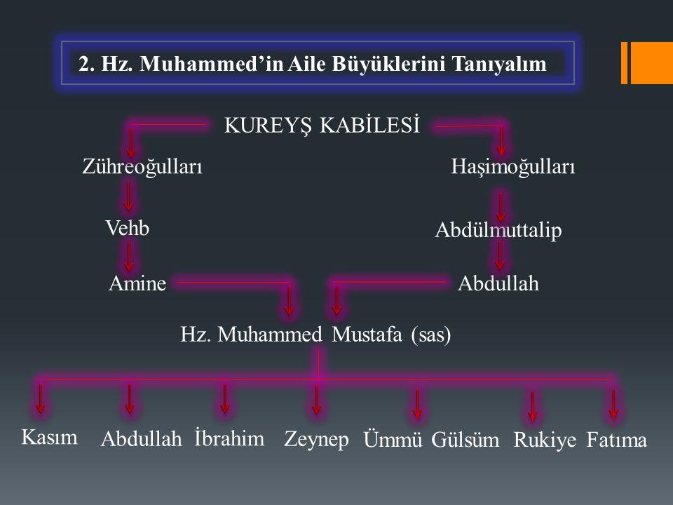 2. Hz. Muhammed'in Aile Büyüklerini Tanıyalım