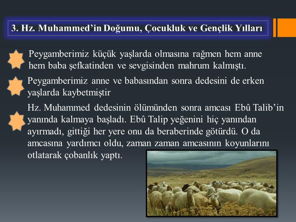 3. Hz. Muhammed'in Doğumu, Çocukluk ve Gençlik Yılları