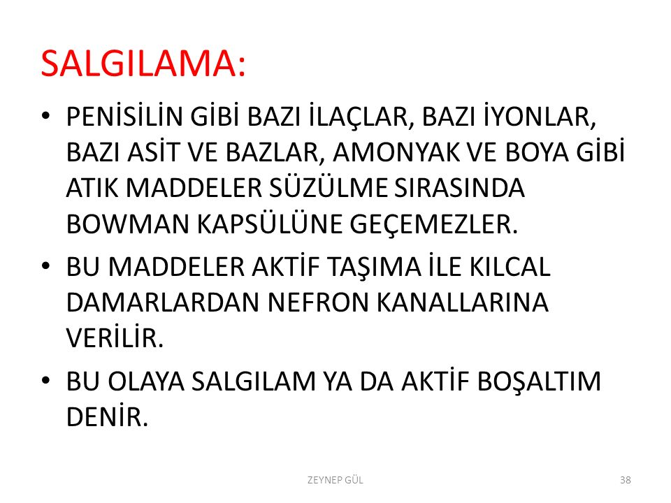 SALGILAMA: