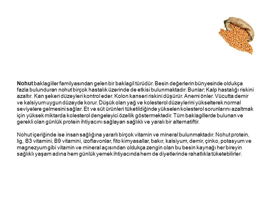 Nohut baklagiller familyasından gelen bir baklagil türüdür