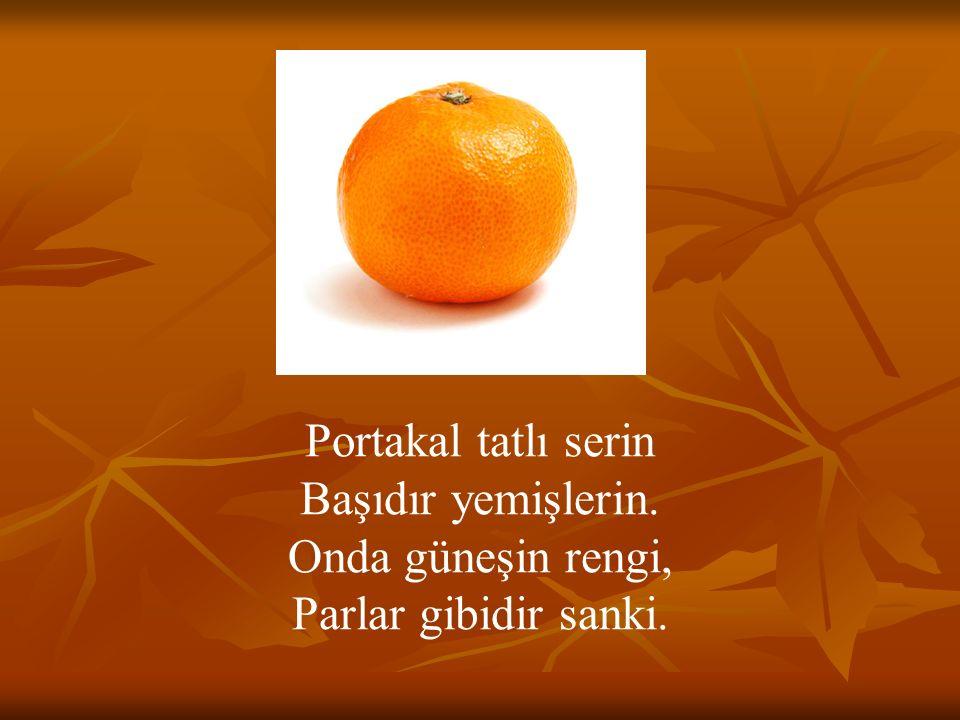 Portakal tatlı serin Başıdır yemişlerin. Onda güneşin rengi, Parlar gibidir sanki.