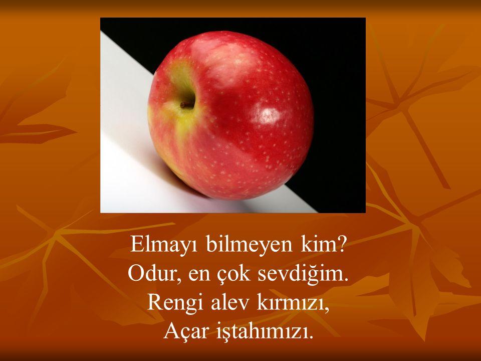 Elmayı bilmeyen kim Odur, en çok sevdiğim. Rengi alev kırmızı, Açar iştahımızı.