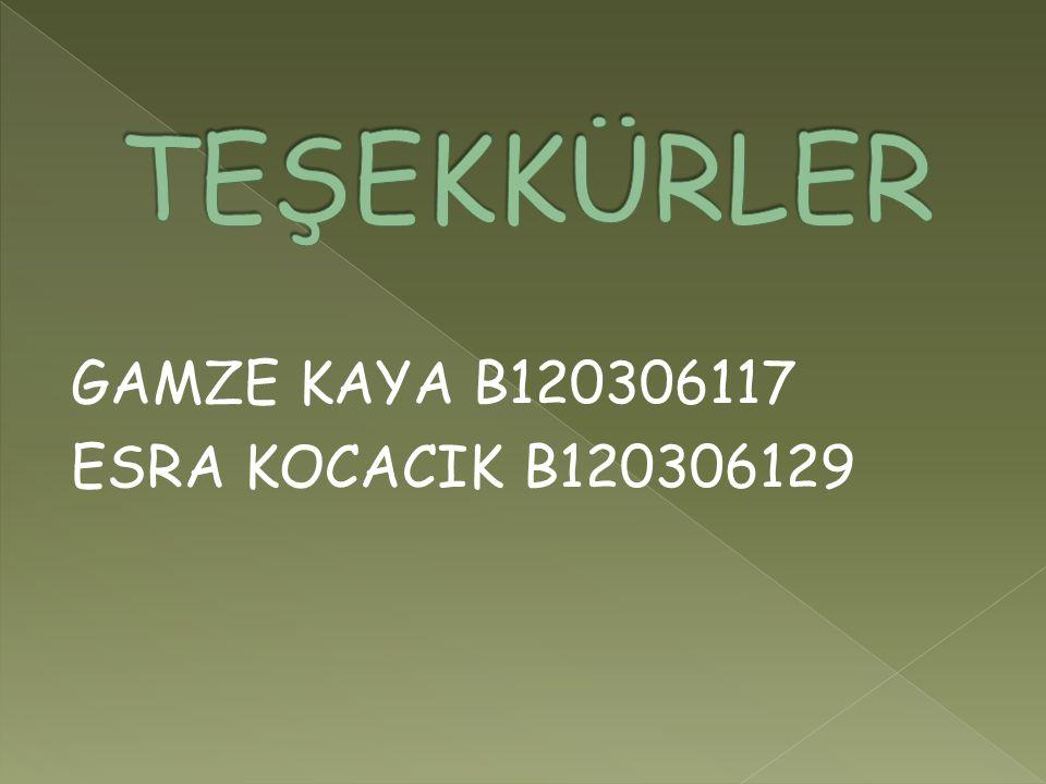 TEŞEKKÜRLER GAMZE KAYA B120306117 ESRA KOCACIK B120306129