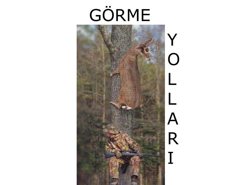 GÖRME YOLLARI