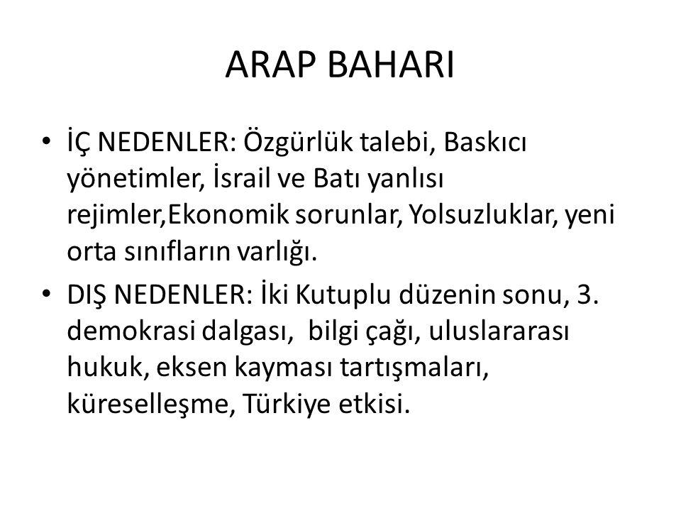 ARAP BAHARI
