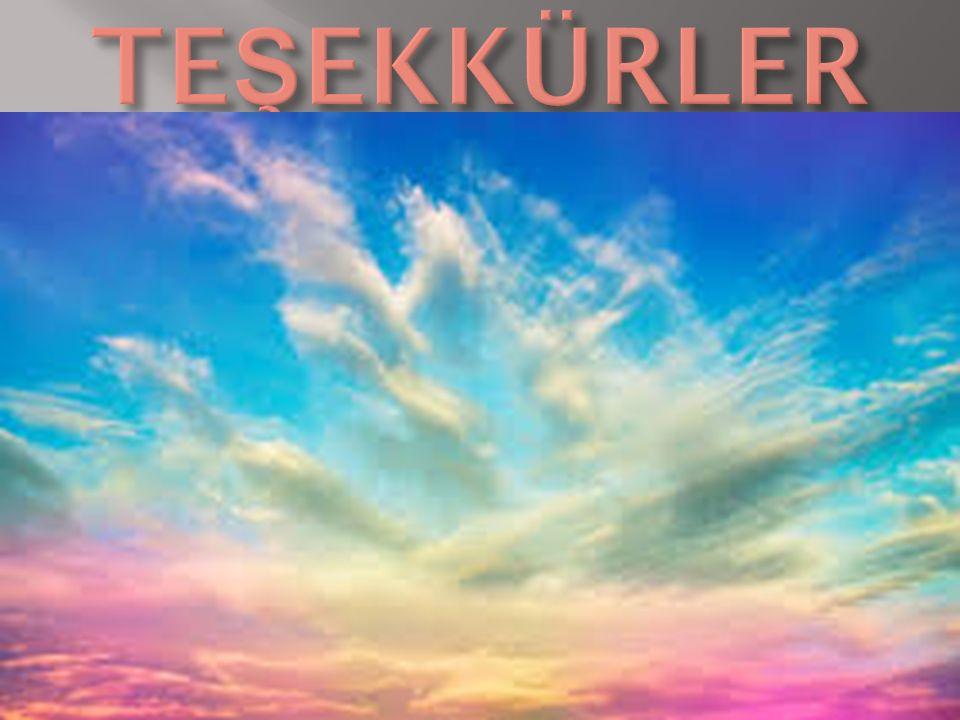 TEŞEKKÜRLER www.egitimhane.com