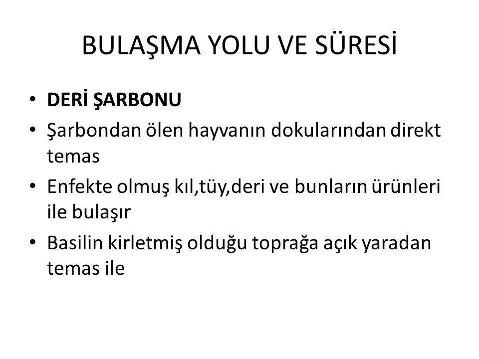 BULAŞMA YOLU VE SÜRESİ DERİ ŞARBONU