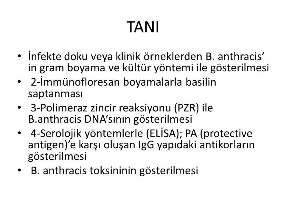 TANI İnfekte doku veya klinik örneklerden B. anthracis' in gram boyama ve kültür yöntemi ile gösterilmesi.