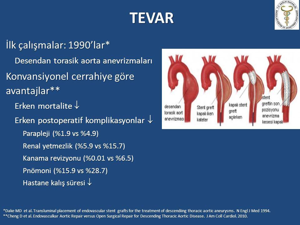 TEVAR İlk çalışmalar: 1990'lar*
