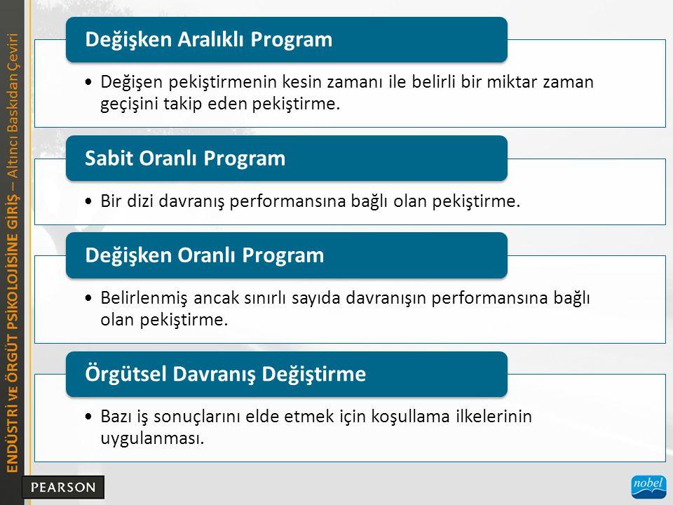 Değişken Aralıklı Program
