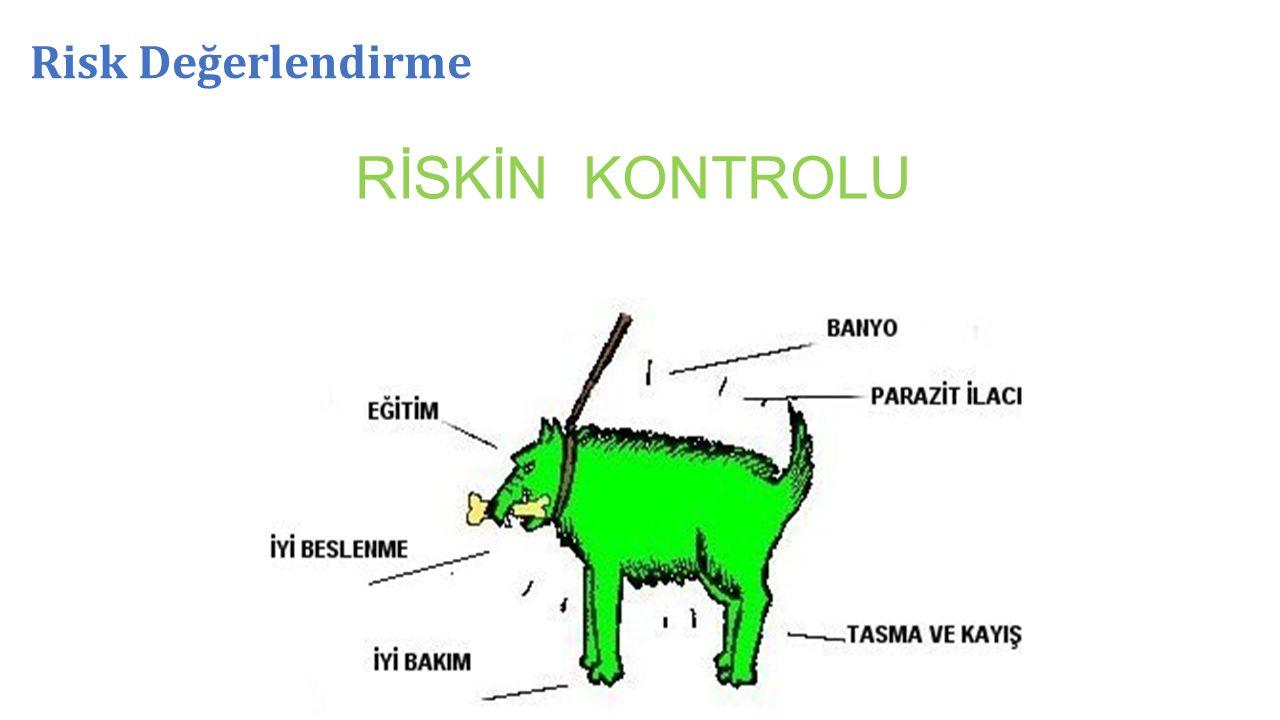 Risk Değerlendirme RİSKİN KONTROLU