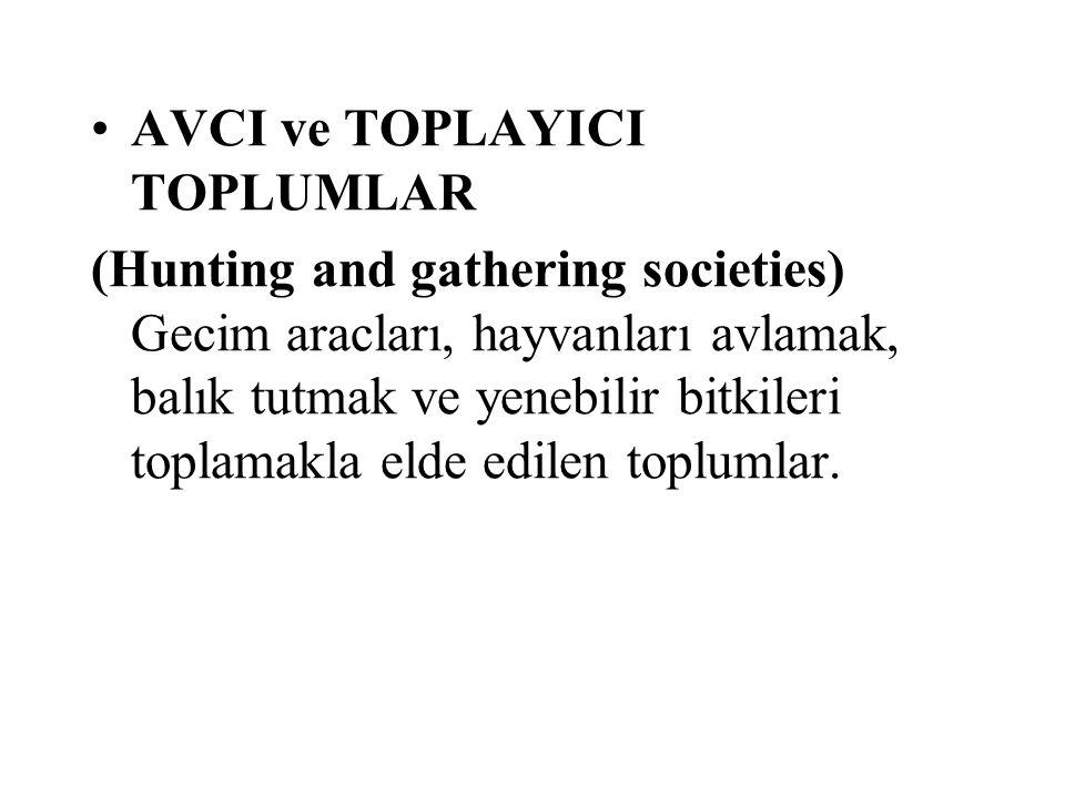 AVCI ve TOPLAYICI TOPLUMLAR
