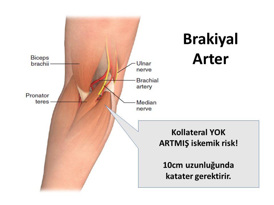 Brakiyal Arter Kollateral YOK ARTMIŞ iskemik risk! 10cm uzunluğunda