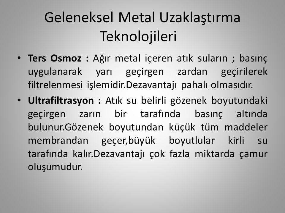 Geleneksel Metal Uzaklaştırma Teknolojileri
