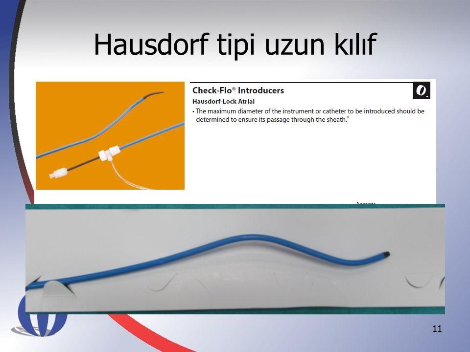 Hausdorf tipi uzun kılıf