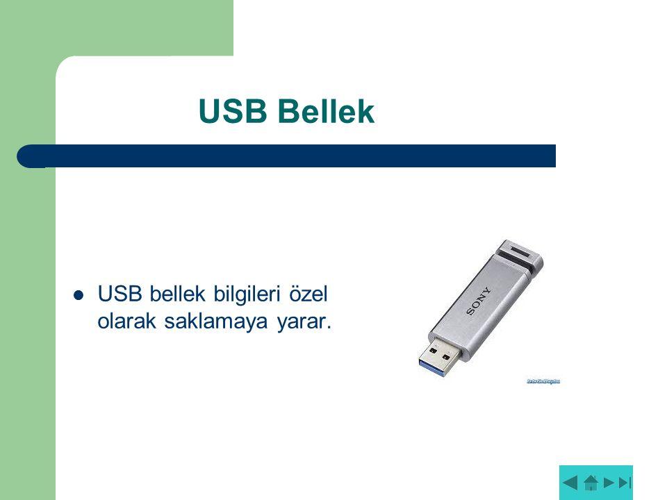 USB Bellek USB bellek bilgileri özel olarak saklamaya yarar.