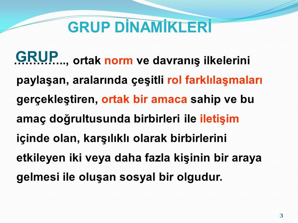 GRUP DİNAMİKLERİ GRUP.