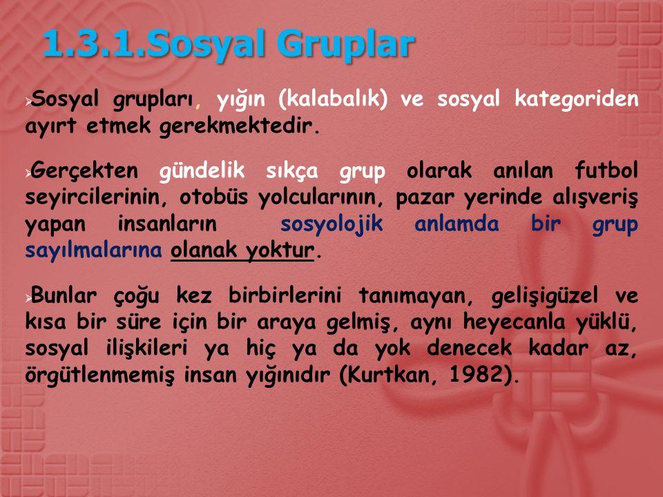 1.3.1.Sosyal Gruplar Sosyal grupları, yığın (kalabalık) ve sosyal kategoriden ayırt etmek gerekmektedir.