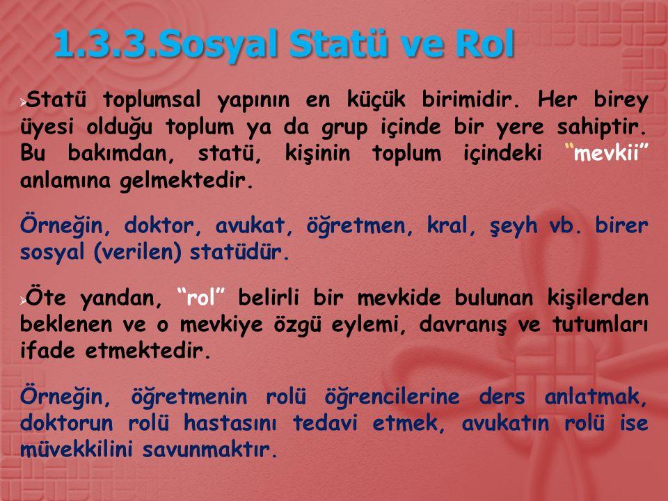 1.3.3.Sosyal Statü ve Rol