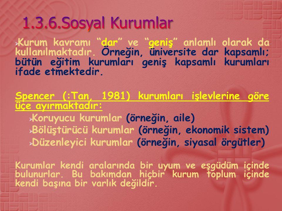 1.3.6.Sosyal Kurumlar