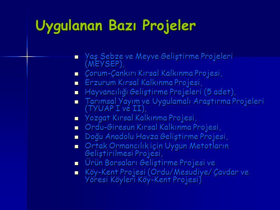 Uygulanan Bazı Projeler