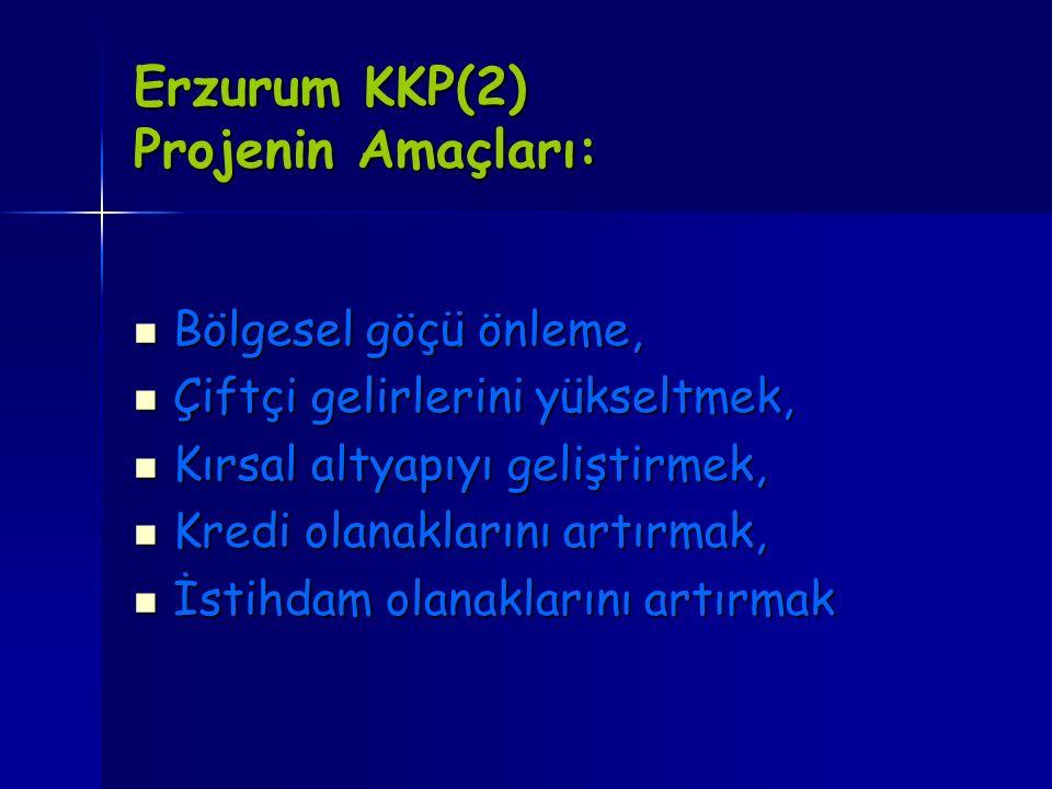 Erzurum KKP(2) Projenin Amaçları: