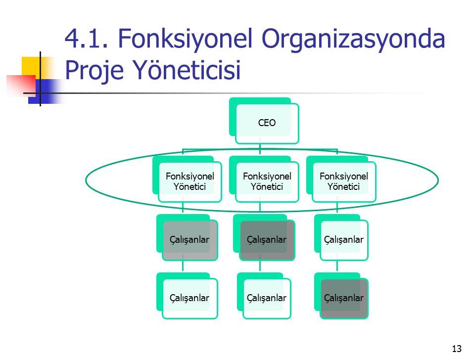 4.1. Fonksiyonel Organizasyonda Proje Yöneticisi