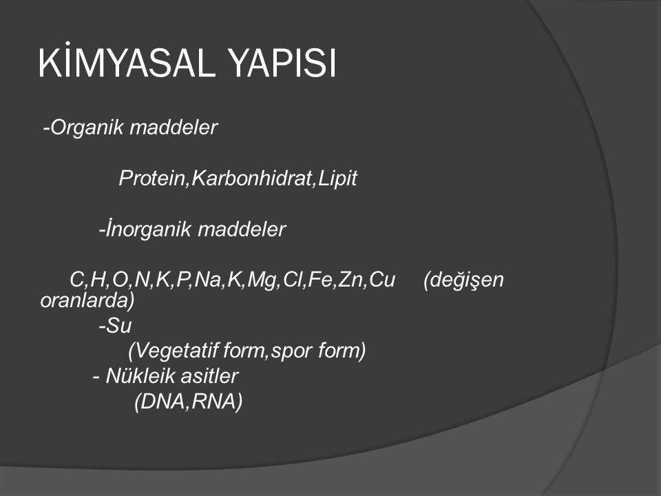 KİMYASAL YAPISI -Organik maddeler Protein,Karbonhidrat,Lipit