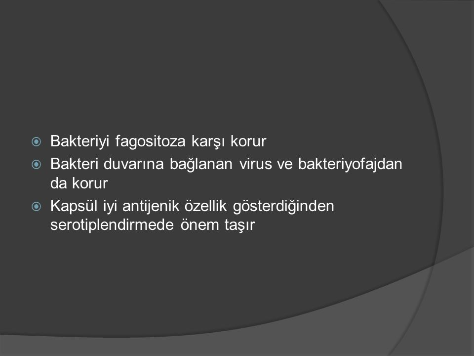 Bakteriyi fagositoza karşı korur